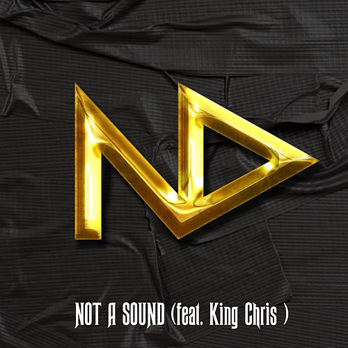 Not a Sound (feat. King Chris) by Nowdaze