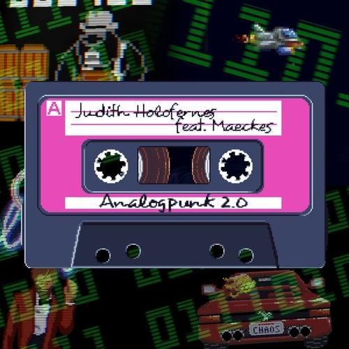 Analogpunk 2.0 von Judith Holofernes