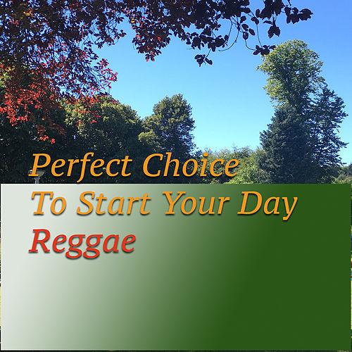 Perfect Choice To Start Your Day. Reggae von Various Artists
