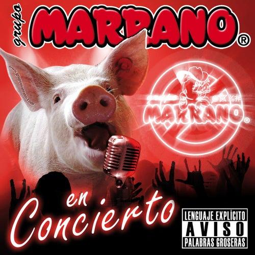 En Concierto van Grupo Marrano