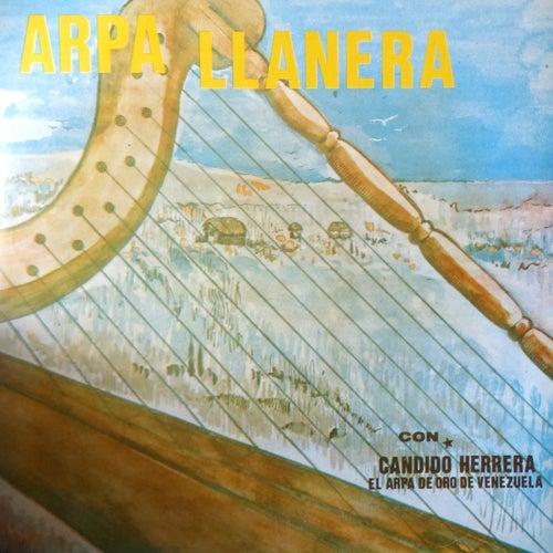Arpa Llanera de Candido Herrera