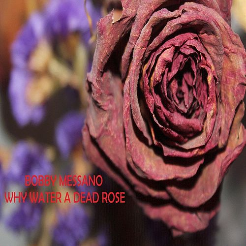 Why Water a Dead Rose von Bobby Messano & NBO