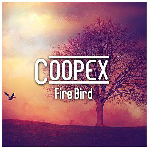 Fire Bird (with Andy) by Coopex