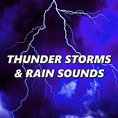 Thunder Storms & Rain Sounds by Thunderstorms