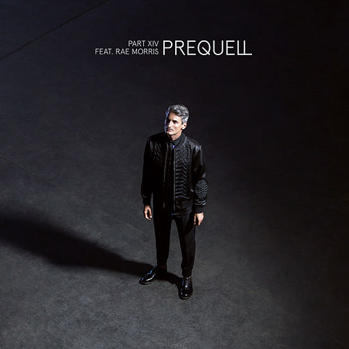 Part XIV by Prequell
