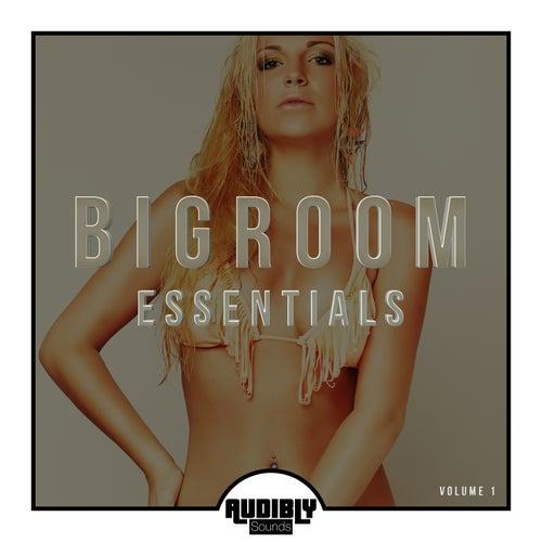 Bigroom Essentials, Vol. 2 by Various Artists