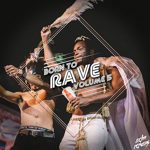 Born to Rave, Vol. 5 by Various Artists