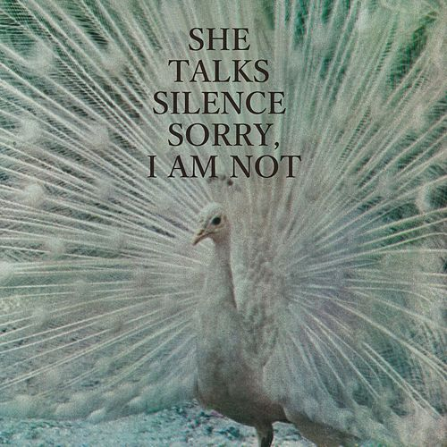 Sorry, I Am Not by She Talks Silence