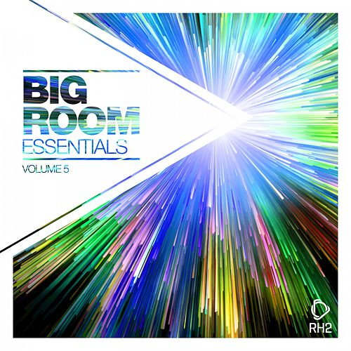 Big Room Essentials, Vol. 5 von Various Artists