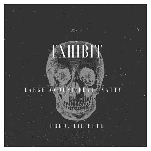 Exhibit (feat. Natty) de Large Amount