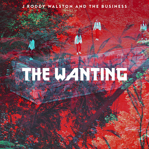 The Wanting by J Roddy Walston