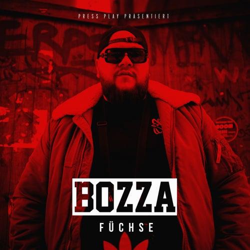 Füchse von Bozza