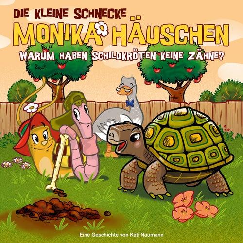 47: Warum haben Schildkröten keine Zähne? von Die kleine Schnecke Monika Häuschen
