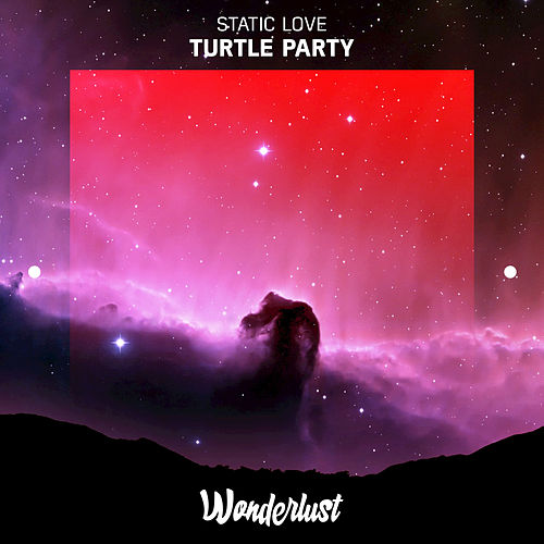 Turtle Party von Static Love