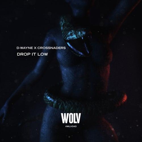 Drop It Low by D-Wayne X Crossnaders
