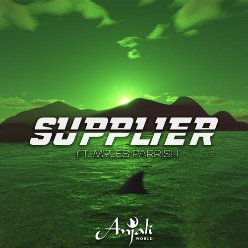 Supplier (feat. Myles Parrish) von Anjali World
