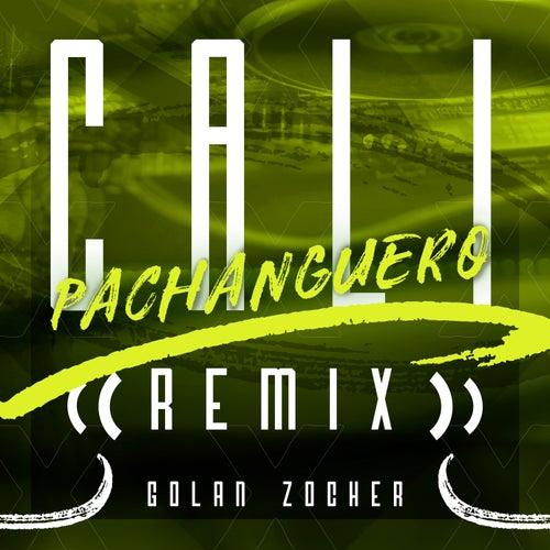 Cali Pachanguero (Remix) von Grupo Niche