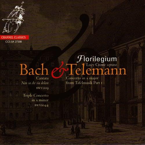 Florilegium Performs Bach & Telemann de Florilegium