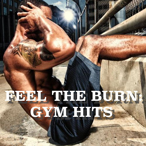 Feel The Burn: Gym Hits by Various Artists