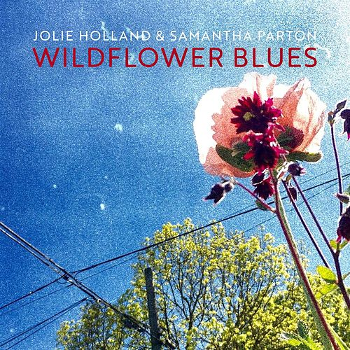 Wildflower Blues de Jolie Holland & Samantha Parton