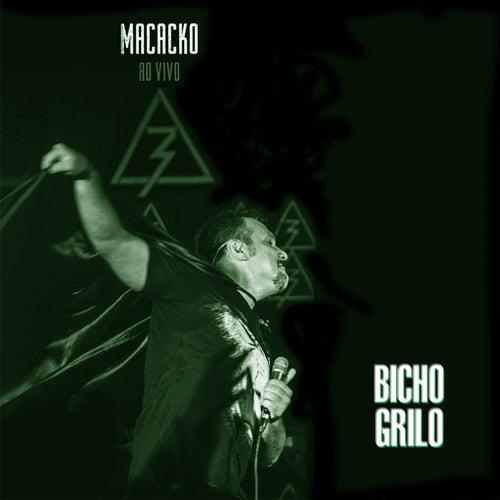 Bicho Grilo (Ao Vivo) de Macacko