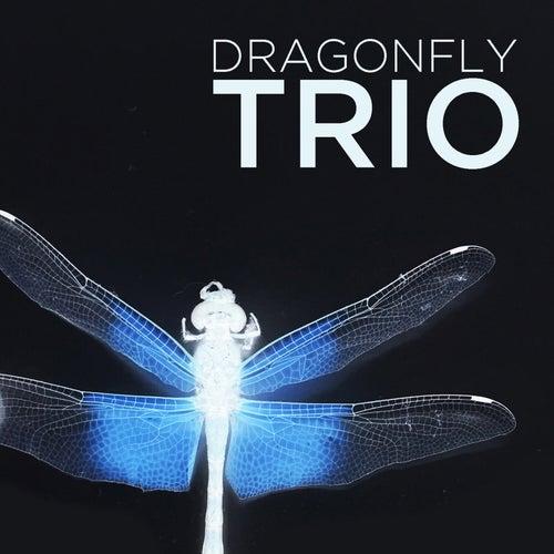 Dragonfly Trio von Dragonfly Trio