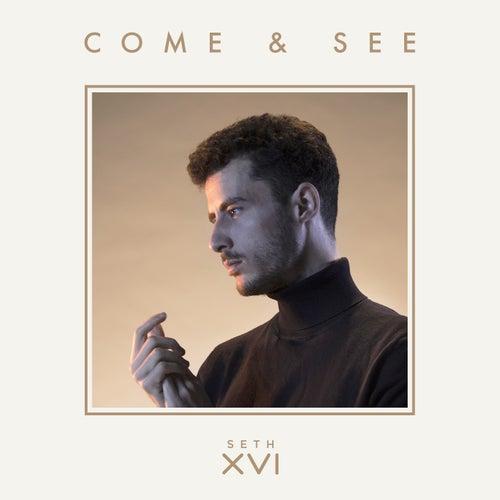 Come & See de Seth XVI