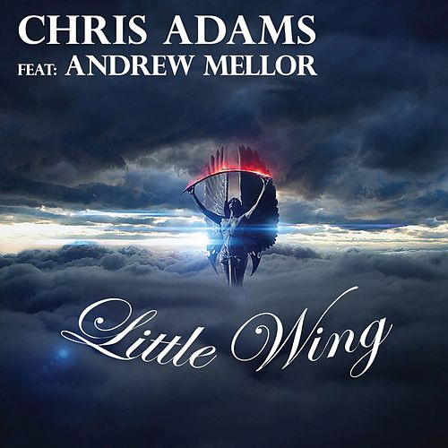 Little Wing by Chris Adams