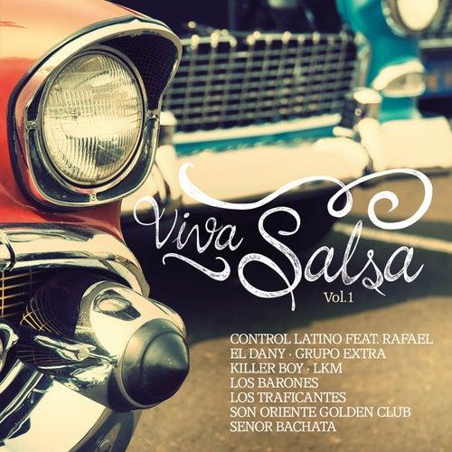 Viva Salsa Vol. 1 de Various Artists
