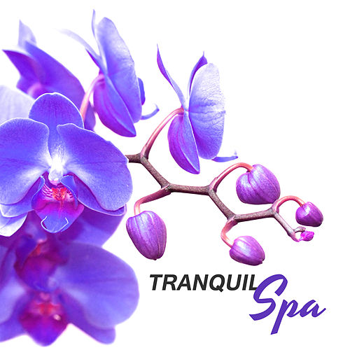 Tranquil Spa – Relaxation Wellness, Nature Sounds to Calm Down, Relax, Pure Mind, Healing Body, Anti Stress Music de Massage Tribe