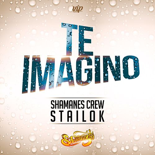 Te Imagino (feat. Stailok) by Shamanes Crew