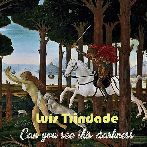 Can You See This Darkness de Luís Trindade