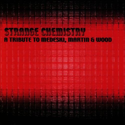 Strange Chemistry: Tribute To Medeski, Martin... de Medeski, Martin and Wood
