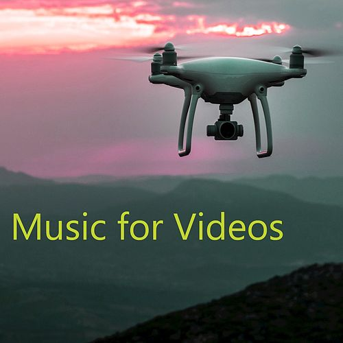 Music for Videos by Various Artists