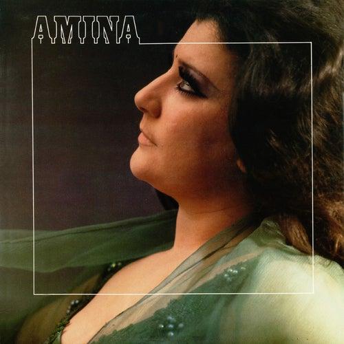 Leyes gitanas von Amina