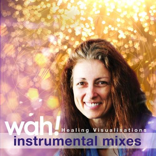 Healing Visualisations (Instrumental Mixes) de Wah!