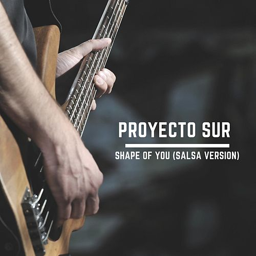 Shape of You (Salsa Version) de Proyecto Sur