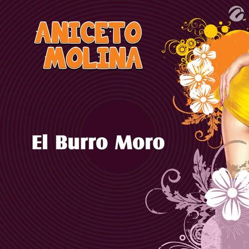 El Burro Moro - Single de Aniceto Molina