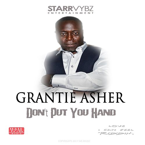 Don't Put Your Hand by Grantie Asher