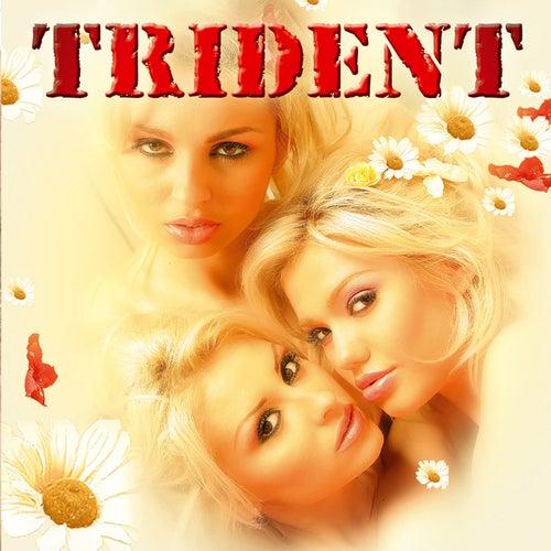 Trident van Trident