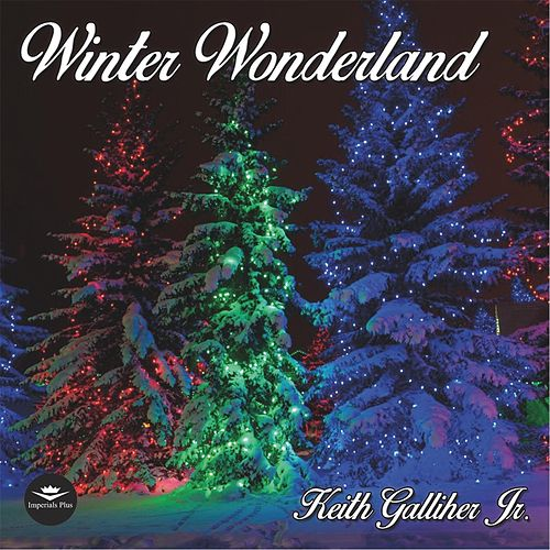 Winter Wonderland van Keith Galliher Jr.