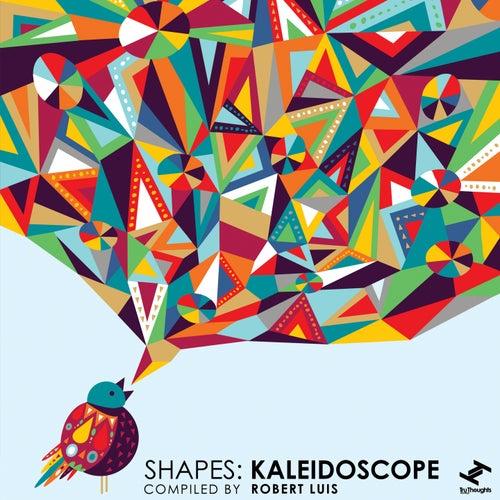 Shapes: Kaleidoscope de Various Artists
