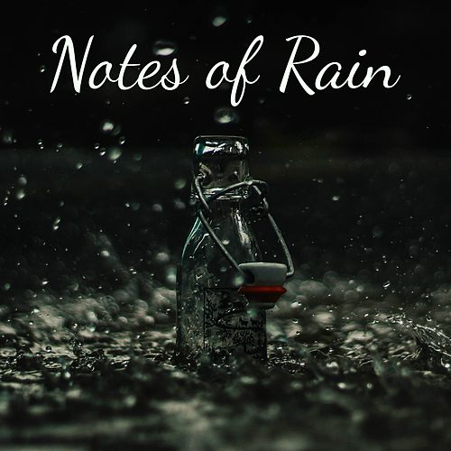Notes of Rain de Fabricantes de Lluvia