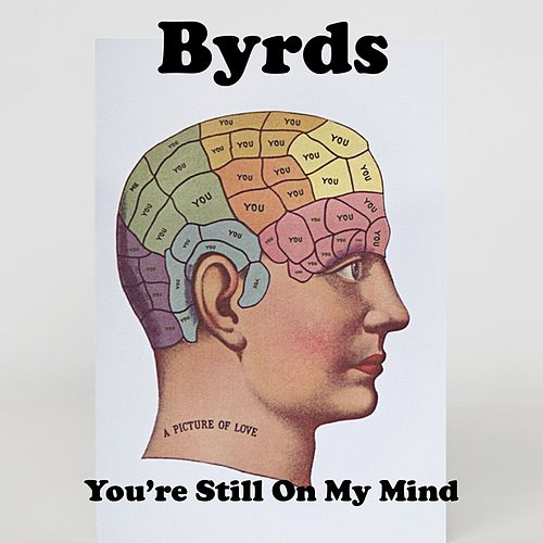 You're Still on My Mind von The Byrds