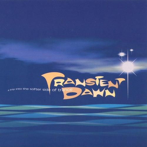 Transient Dawn de Various Artists