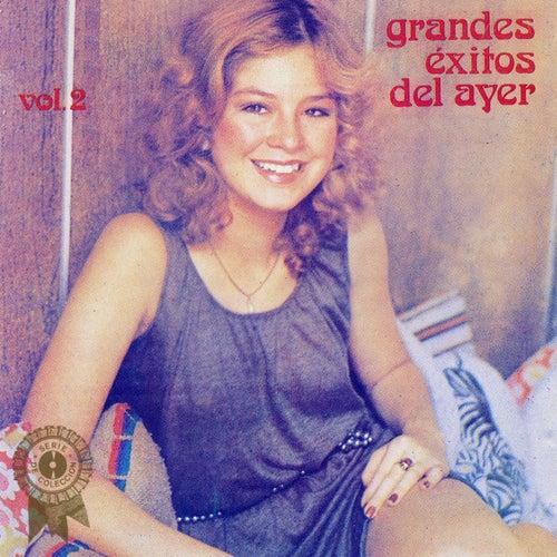 Grandes Éxitos del Ayer Vol. 2 von Various Artists