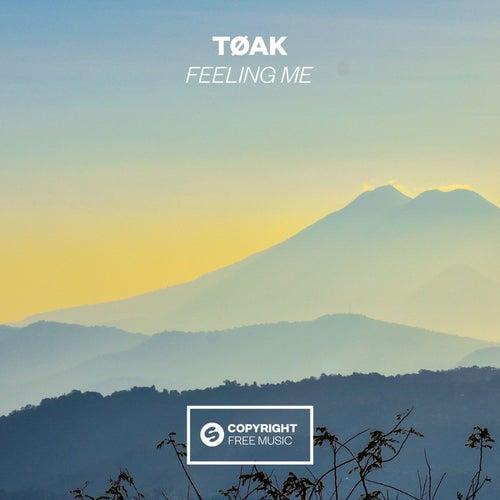 Feeling Me von Tøak