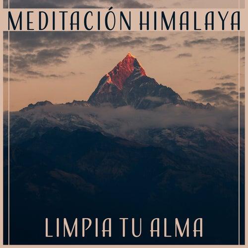 Meditación Himalaya - Limpia Tu Alma, Música de Relajación Profunda, Yoga y Meditación, Espiritualidad y Tranquilidad de Various Artists
