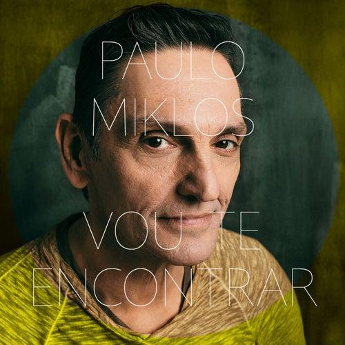 Vou Te Encontrar de Paulo Miklos