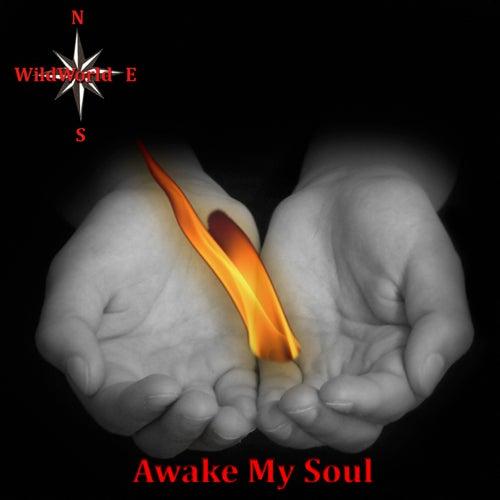 Awake My Soul von Wild World
